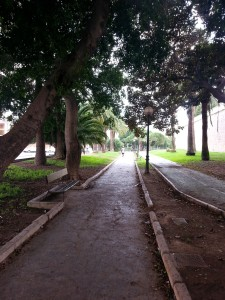 A footpath going through the trees in Cartagena